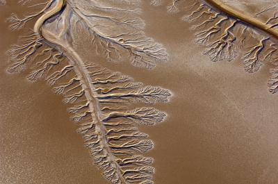 colorado_river_delta